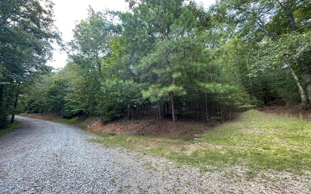 BEAUTIFULLY WOODED LOT IN THE MOUNTAINS OF NORTH CAROLINA IN A GATED SUBDIVISION!! Wonderful level to a gentle building lot, homesite cleared, driveway in place. Underground utilities, three-bedroom septic permit on file. Great location, close to John C. Campbell Folk School.
