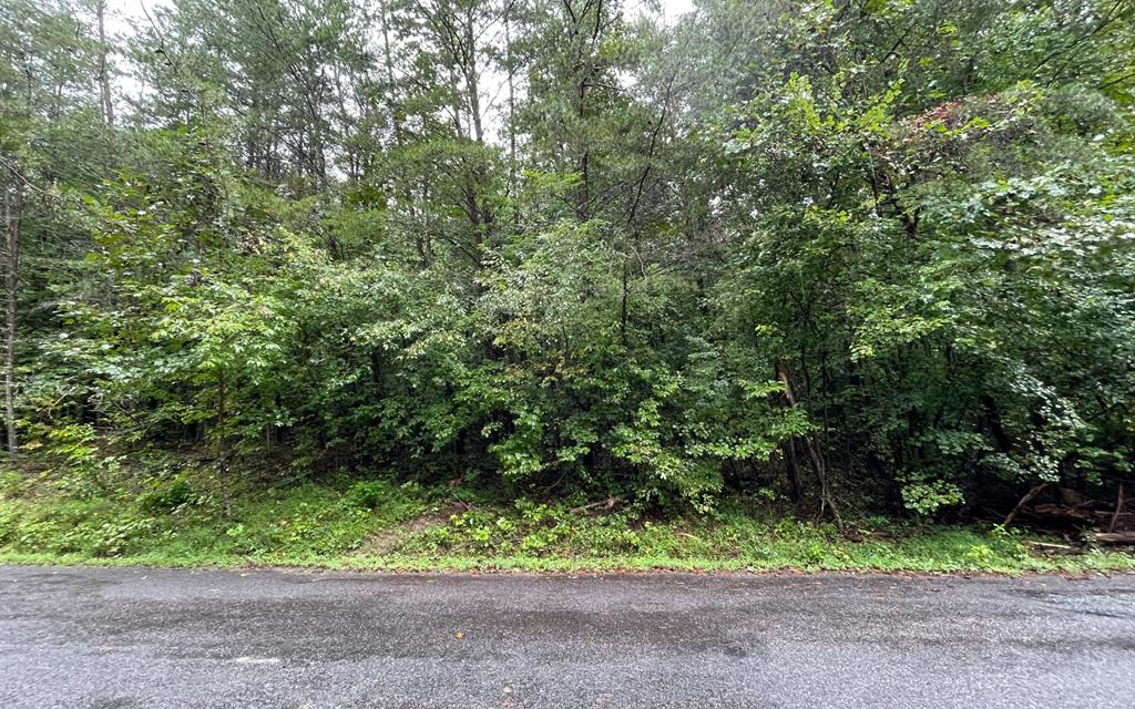 BEAUTIFULLY WOODED LOT IN THE MOUNTAINS OF NORTH GEORGIA!! Located in a well-established neighborhood with paved roads, this lot offers a gentle building site and is conveniently located between Blairsville and Young Harris/Hiawassee.