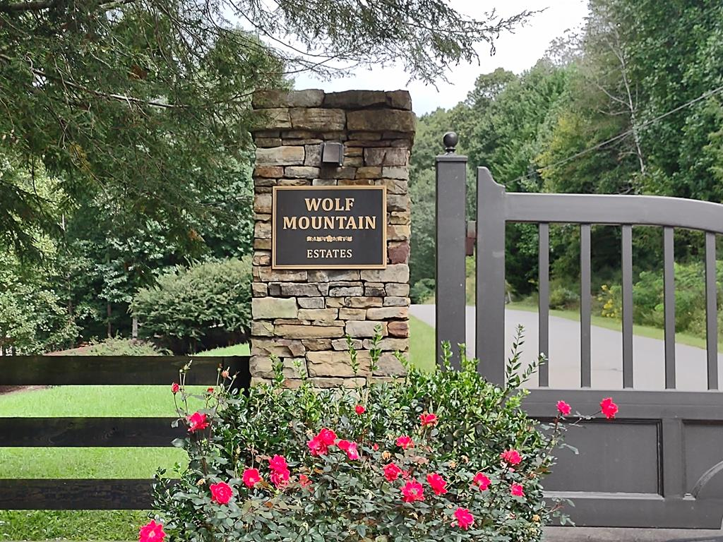 Before you arrive at Wolf Mountain Estates, you will see beautiful mountain views of North Carolina and Tennessee. This large 2.4 acre lot is in a gated community with over 400 feet of paved road frontage. Peacefulness and quite surrounds you with lots of wildlife. A great place to build your getaway mountain cabin. Buy Now - Build when you want. This beautiful landscaped community offers a clubhouse, outdoor firepit, pond and a large area for your family gatherings.