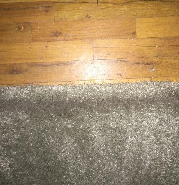 Hardwood Under Carpet Throughout Home