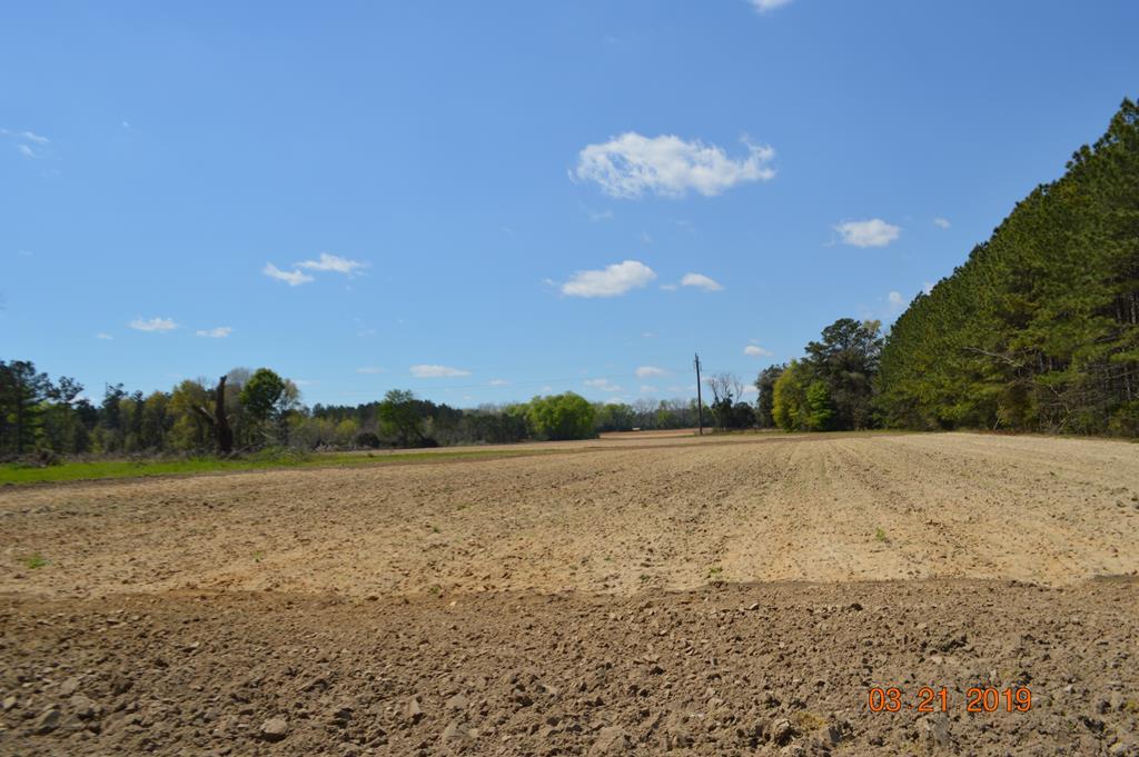 Open Farm Land