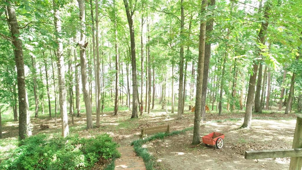 Nice Wooded Lot