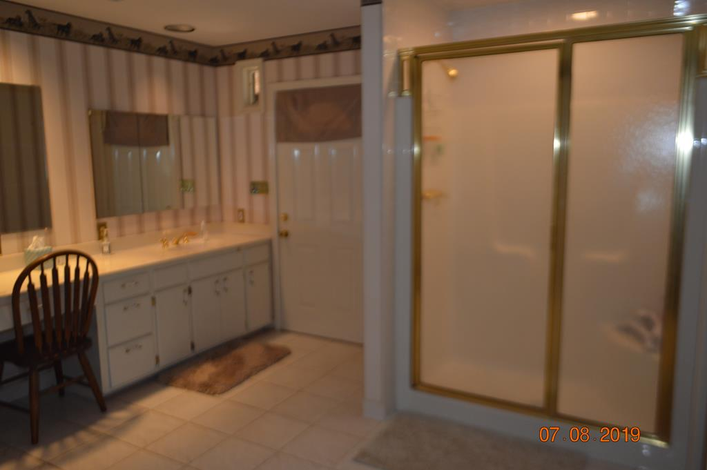 Master Bath Shower and Vanity