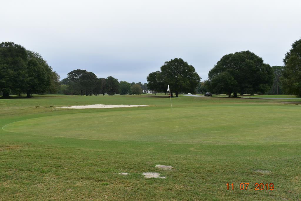 Number 1 Green