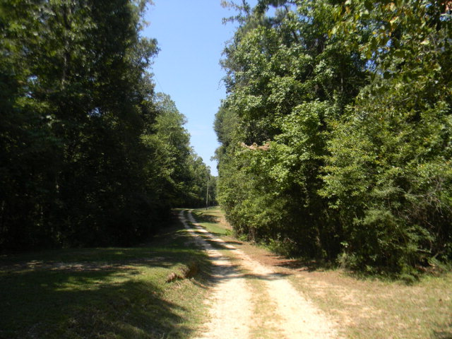 8277 hwy 43 North, Poplarville, MS 39470