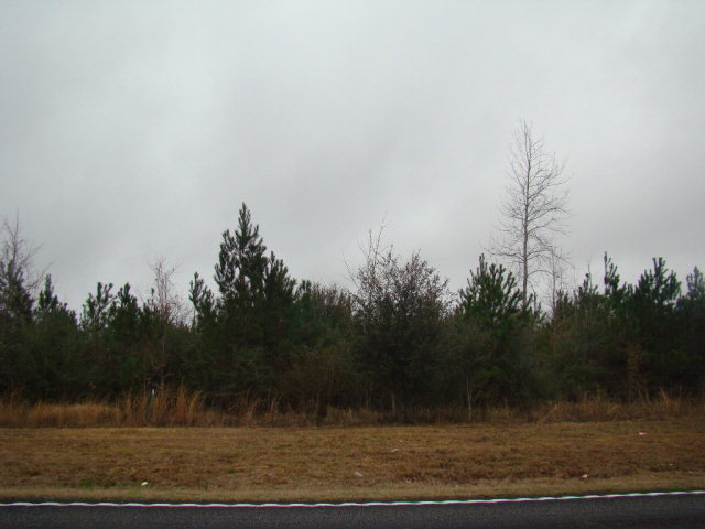Hwy 53, Poplarville, MS 39470