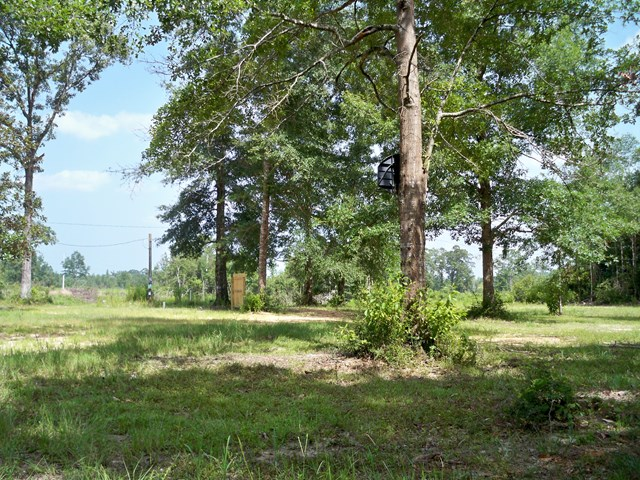 999 Dummyline Road, Wiggins, MS 39577
