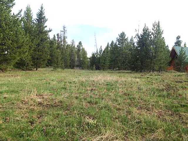 3518 Bull Moose Lane