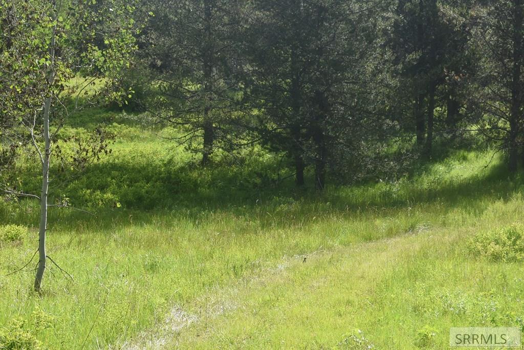 4411 Granite Ridge