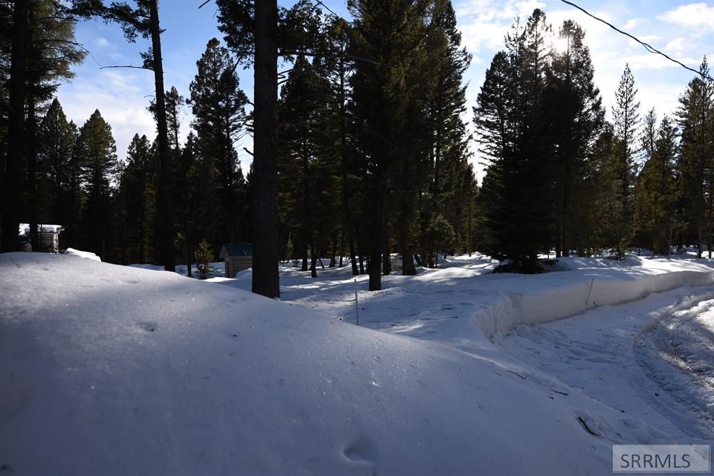 4152 Wooded Lane