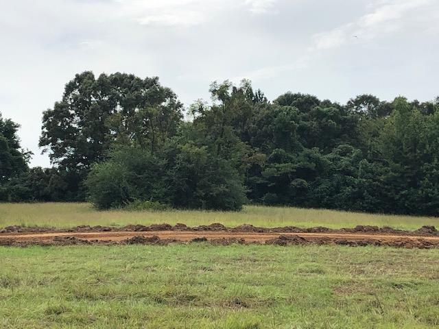 Last Chance to own an Estate lot in one of Oxford's most popular new neighborhoods. Phase IV lots are the last lots available and last Phase being built in Woodson Ridge Subdivision. These 2 acre to 5 acre lots are bigger than the two previous phases. The open pasture and mature hardwood canopy create a setting like no other. Only minutes to town and being in the Oxford City School District, these lots won't last long. Enjoy breathtaking scenery, panoramic views, abundant wildlife, and beautiful community of neighbors. Build your custom home on these beautiful estate lots! Lots range 2-5 ACRES