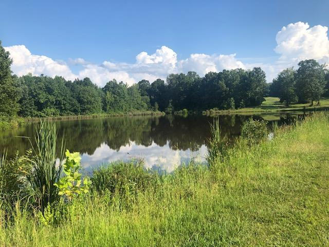 Located in Tula, features include  approximately 2 acre pond, about 150 ft of road frontage and 25 acres of 10 year old tree growth. A very good hunting and fishing piece of land with nice  home spots to build on too