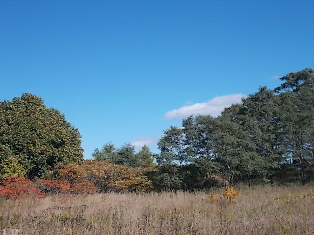 Lot 1 Old Stage Ct, Ellison Bay, WI 54210