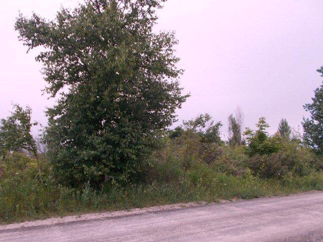 Lot 4 Old Stage Ct, Ellison Bay, WI 54210