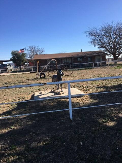 13611 W County Rd 179, Midland, TX 79766