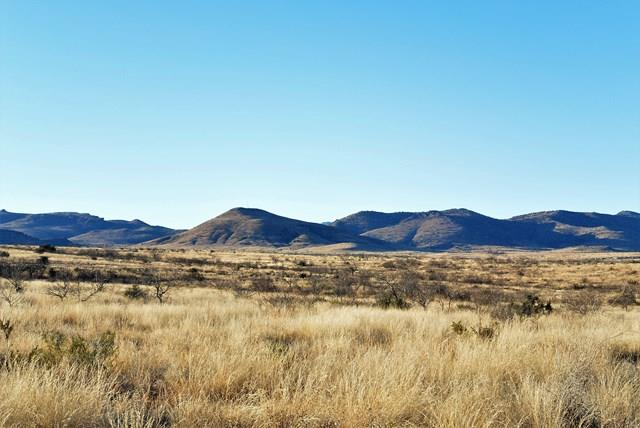 Antelope Drive, Alpine, TX 79830