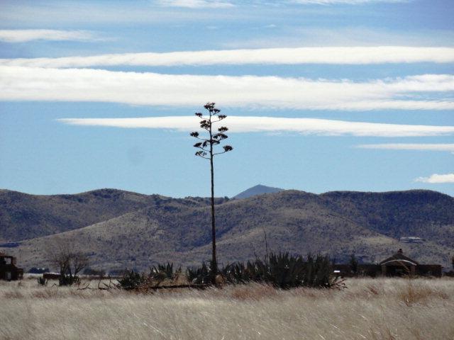 N North Hwy 118, Alpine, TX 79830