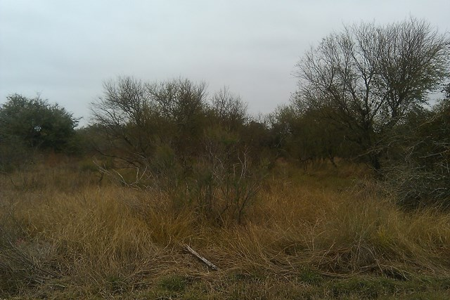473 Banty Ln, Aransas Pass, TX 78336