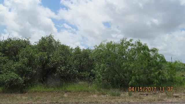 409 Forest Oak Ln, ROCKPORT(HOLIDAY BEACH), TX 78382