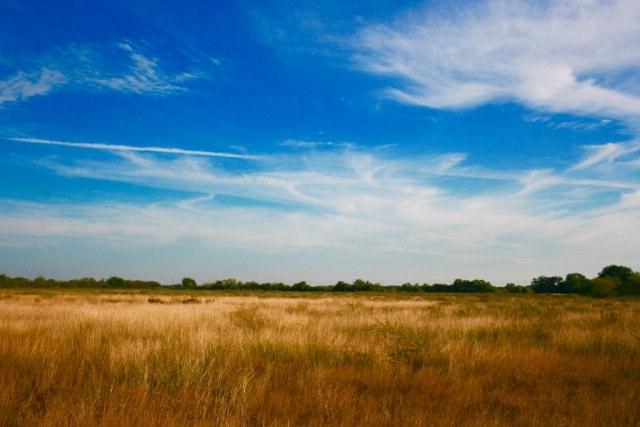 000 Wright, Goliad, TX 77963