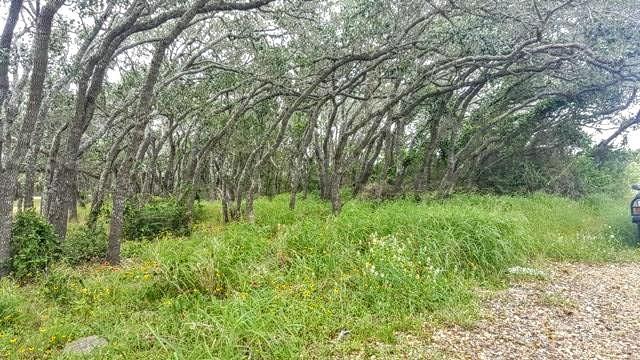 578 Mesquite Tree Loop, ROCKPORT, TX 78382