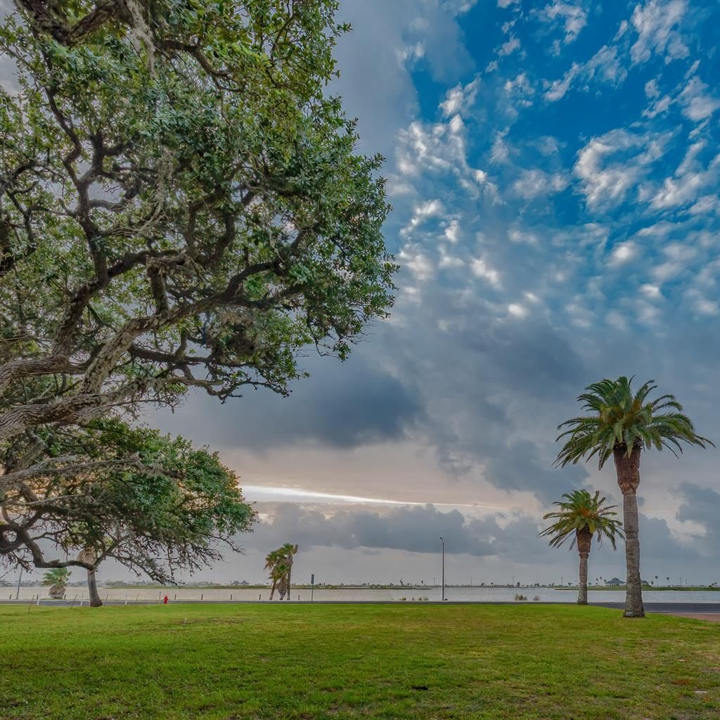 Amazing opportunity to own a spetacular piece of Little Bay water front in Rockport with most beautiful views of Rockport Beach, the birds rockery island and the best sunrises! The mature live oaks in the back and clear front to build, corner lot, amazing exposure for a business, home, B&B endeless possibilities! The property extends across from HWY 35 to the shores so you can own your own beach! Why not to grab this awesome commercial/residential opportunity!?