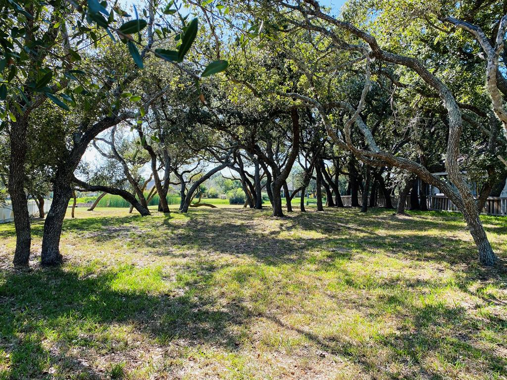 Large, beautifully treed Fairway lot over looking an expansive pond. Drive by and picture your dream home at this location. It is truly fabulous! Great large and mature Live Oak trees, wonderful views and lots of room for the home of your dreams.