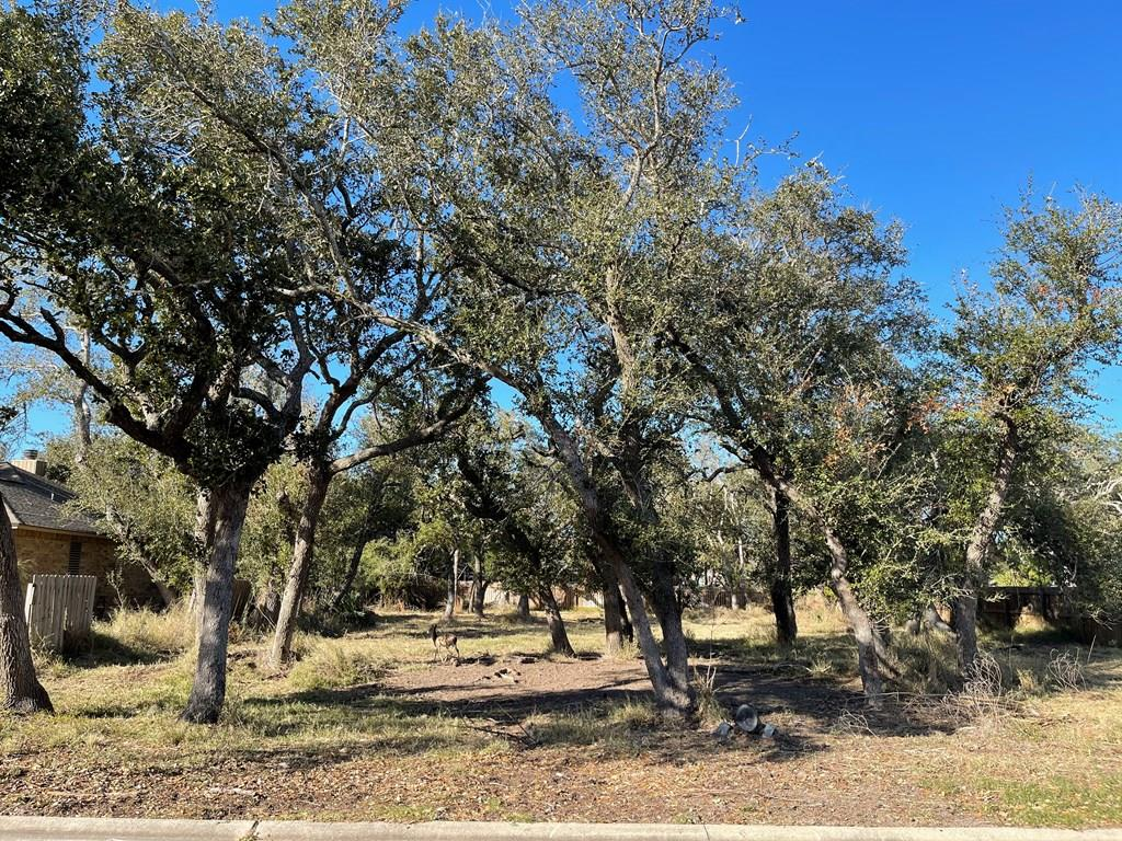 Beautiful oversized lot to build your coastal home in the Rockport Country Club, convenient located near Tule Creek Trails and Pavilion, stores and RCC clubhouse-restaurant recently remodeled, pool and golf course near by. Minutes from Rockport BEACH, downtown Rockport or Fulton! This lot has mature oak trees and perfect location to have your own Rockport oasis to watch wildlife passing by! Drive by and check it out! Low HOA fees. Check https://rcchomeowners.com/ for restrictions and subdivision information. Go to https://www.rockportcc.com/ for club and gulf membership information.