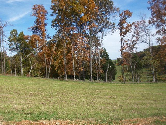 Real Estate for Sale, ListingId: 14239325, Byrdstown,TN38549