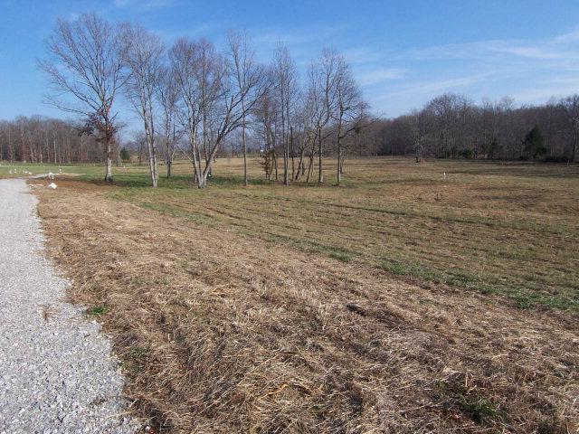 Real Estate for Sale, ListingId: 14465175, Byrdstown,TN38549