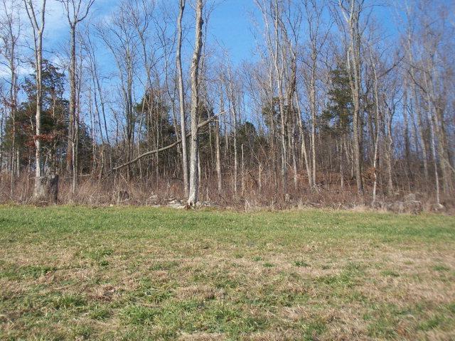 Real Estate for Sale, ListingId: 14465181, Byrdstown,TN38549
