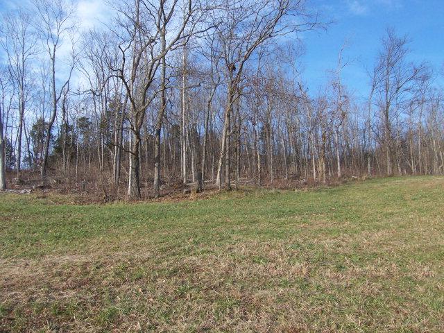 Real Estate for Sale, ListingId: 14465182, Byrdstown,TN38549