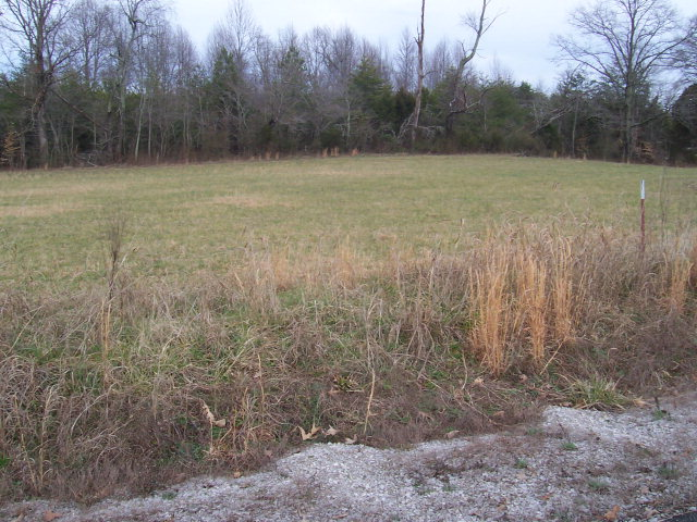 Land for Sale, ListingId:15412184, location: 151 Doubletree Lane Livingston 38570