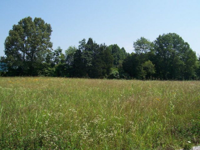 Land for Sale, ListingId:15412186, location: 191 Doubletree Lane Livingston 38570