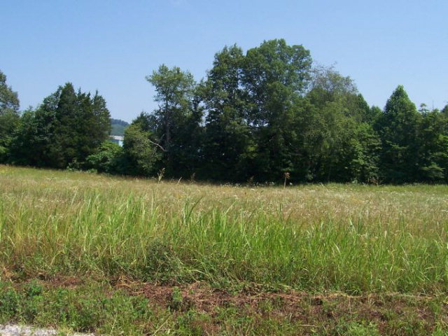 Land for Sale, ListingId:15412188, location: 221 Doubletree Lane Livingston 38570
