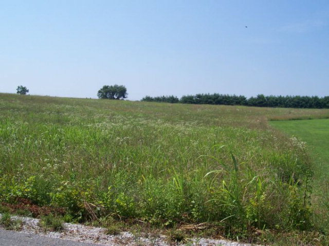 Land for Sale, ListingId:15412194, location: 160 Doubletree Lane Livingston 38570