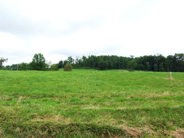 Real Estate for Sale, ListingId: 15562509, Byrdstown,TN38549