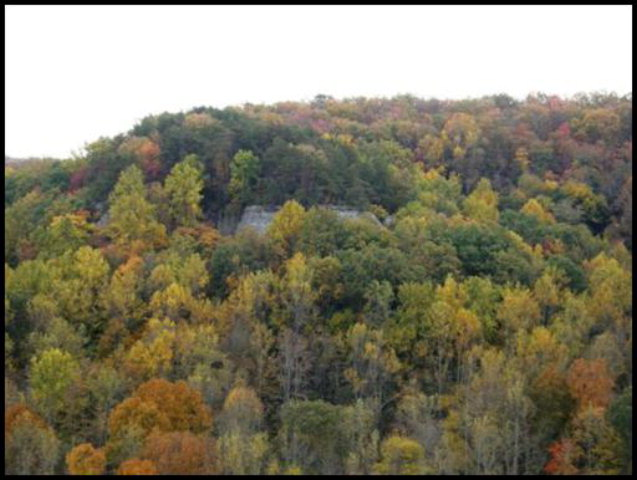 Real Estate for Sale, ListingId: 29121978, Monterey, TN  38574