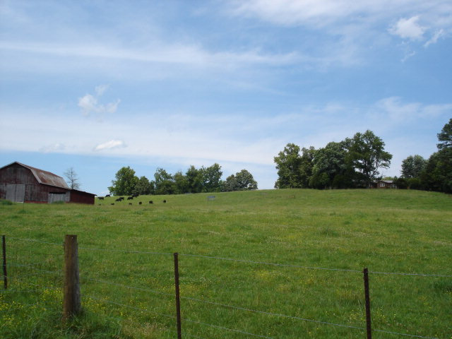 Viewing Image 8
