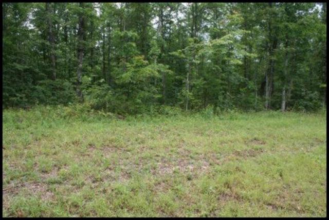 Real Estate for Sale, ListingId: 31408453, Jamestown,TN38556
