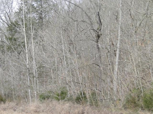 Real Estate for Sale, ListingId: 20187671, Smithville,TN37166