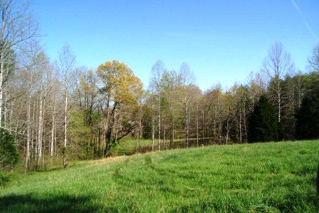 Real Estate for Sale, ListingId: 30150256, Alpine,TN38543