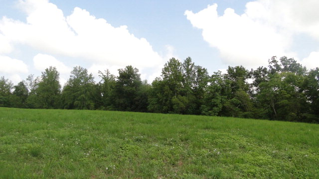 Real Estate for Sale, ListingId: 20238694, Baxter, TN  38544