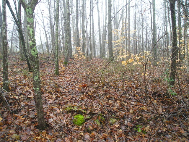 Land for Sale, ListingId:26250073, location: 51 Plateau Drive Smithville 37166
