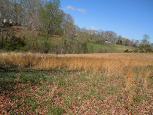 Land for Sale, ListingId:23200978, location: 3.34 AC Old Standing Stone Rd Livingston 38570