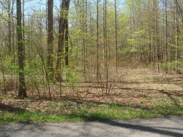 Real Estate for Sale, ListingId: 23314858, Monterey, TN  38574