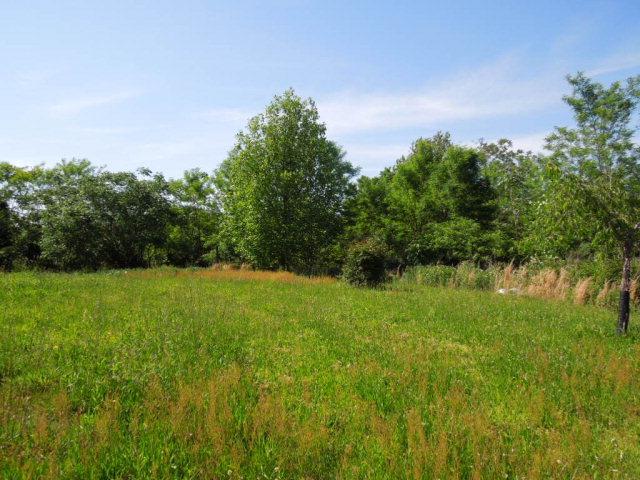 Real Estate for Sale, ListingId: 23613487, Smithville,TN37166