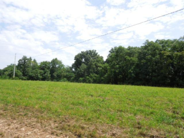 Real Estate for Sale, ListingId: 23998657, Gainesboro,TN38562