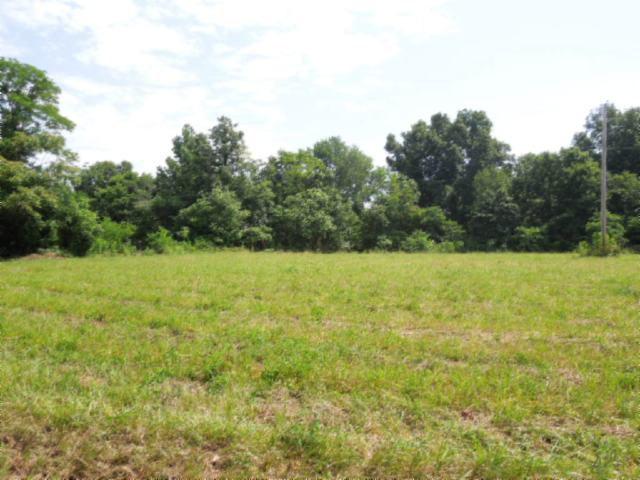 Real Estate for Sale, ListingId: 23998658, Gainesboro,TN38562