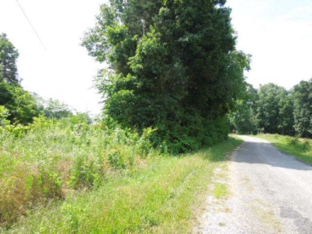 Real Estate for Sale, ListingId: 23998659, Gainesboro,TN38562